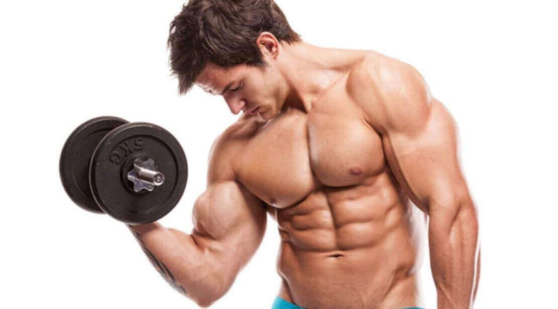 biceps-2_0