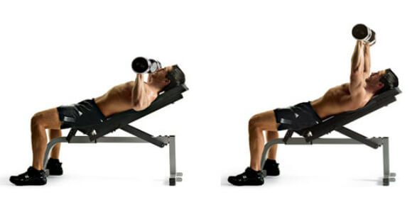 dumbbell incline press üst kol açısı