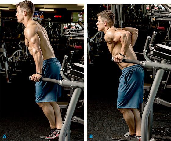 Triceps dips hareketinin başlangıç ve bitiş pozisyonları