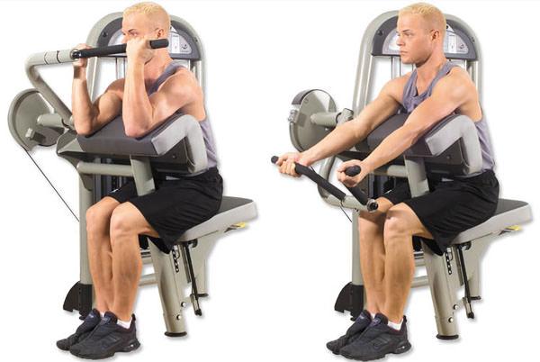 Biceps Curl Machine nasıl yapılır
