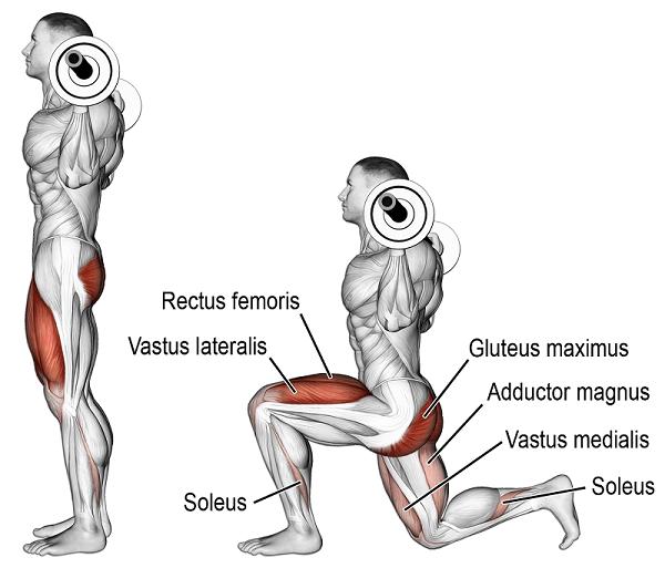 Barbell lunge nasıl yapılır