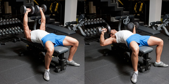 dumbell press nasıl