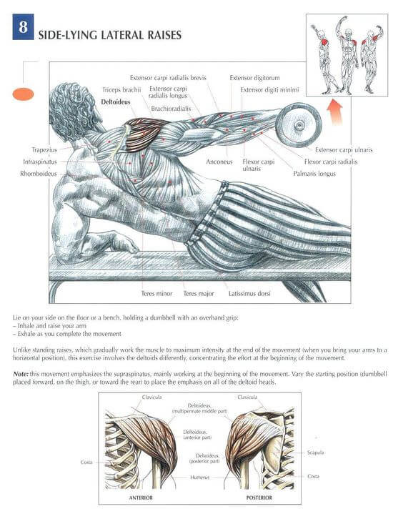Side Lying Lateral Raise