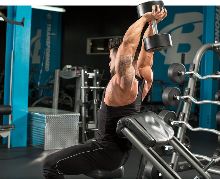 Overhead Dumbbell Triceps Extension