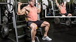 behind the neck press seated