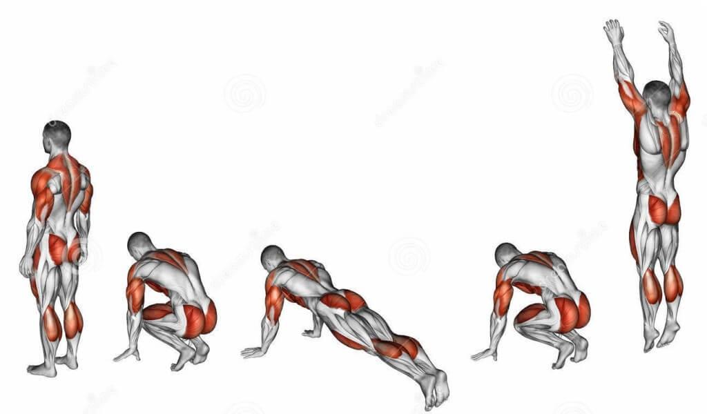 Burpees egzersizinin çalıştırdığı kaslar