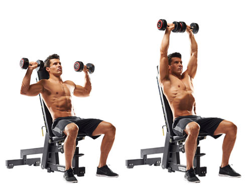 Shoulder dumbbell press