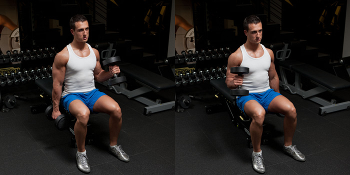 Seated alternating hammer curl