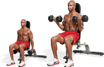 seated biceps dumbbell