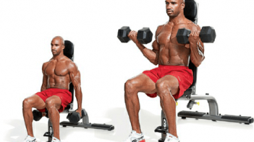 seated dumbbell curl 2018