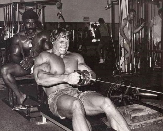 Seated Cable Row