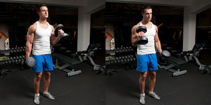 Standing Alternating Hammer Curl