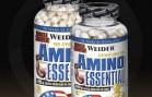 amino asit