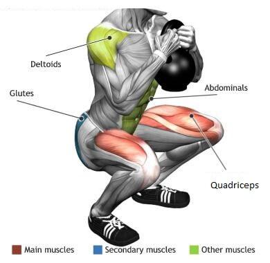 goblet squat çalıştırdığı kaslar